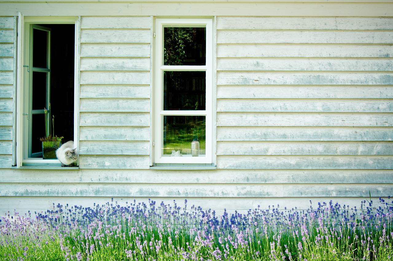façade d'une maison en bois peinte dans une couleur claire